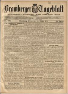 Bromberger Tageblatt. J. 29, 1905, nr 239