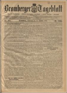 Bromberger Tageblatt. J. 29, 1905, nr 245