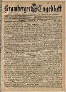 Bromberger Tageblatt. J. 29, 1905, nr 251