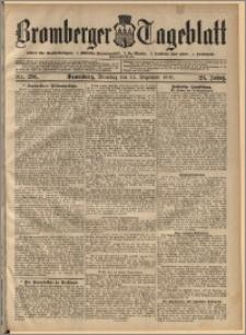 Bromberger Tageblatt. J. 29, 1905, nr 291