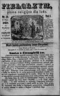 Pielgrzym, pismo religijne dla ludu 1869 rok I nr 22