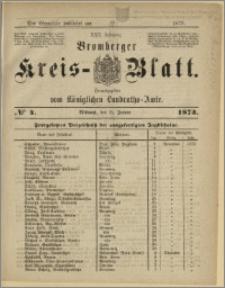 Bromberger Kreis-Blatt, 1873, nr 4