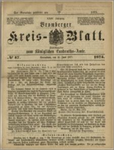 Bromberger Kreis-Blatt, 1875, nr 47