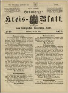 Deutsche Rundschau in Polen. J. 47, 1923, nr 25