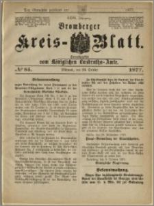 Deutsche Rundschau in Polen. J. 47, 1923, nr 85