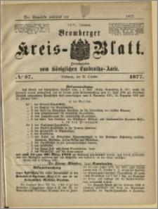Deutsche Rundschau in Polen. J. 47, 1923, nr 87