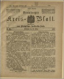 Bromberger Kreis-Blatt, 1881, nr 26