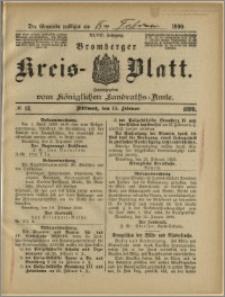 Bromberger Kreis-Blatt, 1899, nr 13