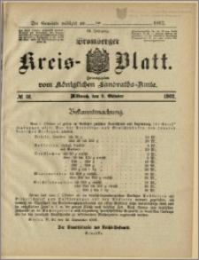 Bromberger Kreis-Blatt, 1902, nr 81