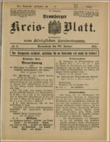 Bromberger Kreis-Blatt, 1915, nr 9
