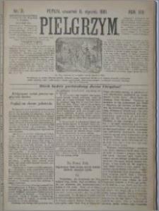 Pielgrzym, pismo religijne dla ludu 1881 nr 3