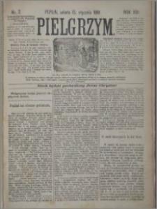 Pielgrzym, pismo religijne dla ludu 1881 nr 7