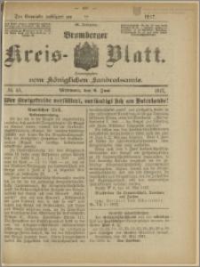 Bromberger Kreis-Blatt, 1917, nr 45