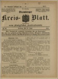 Bromberger Kreis-Blatt, 1917, nr 48