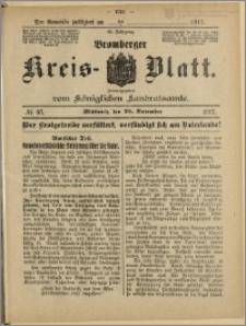 Bromberger Kreis-Blatt, 1917, nr 95