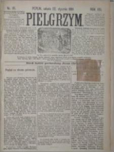 Pielgrzym, pismo religijne dla ludu 1881 nr 10