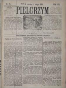 Pielgrzym, pismo religijne dla ludu 1881 nr 15