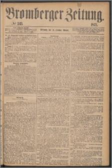 Bromberger Zeitung, 1872, nr 243