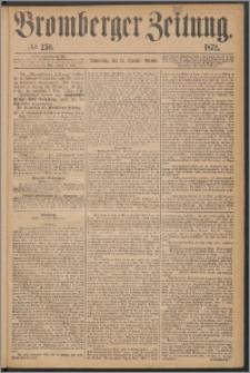 Bromberger Zeitung, 1872, nr 250