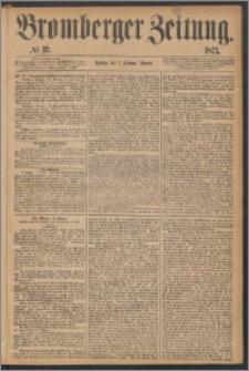 Bromberger Zeitung, 1873, nr 32