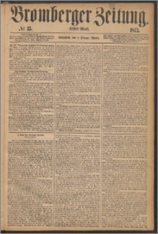 Bromberger Zeitung, 1873, nr 33