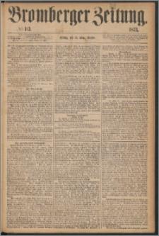 Bromberger Zeitung, 1873, nr 113