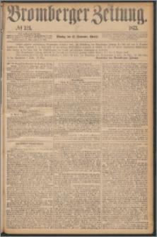Bromberger Zeitung, 1873, nr 221