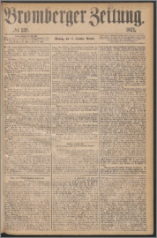 Bromberger Zeitung, 1873, nr 239