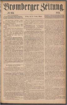 Bromberger Zeitung, 1875, nr 253