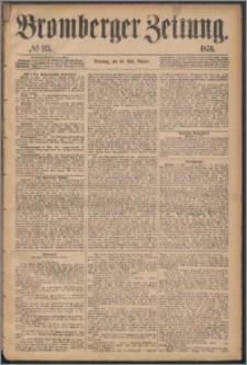 Bromberger Zeitung, 1876, nr 113