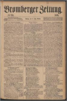 Bromberger Zeitung, 1876, nr 134