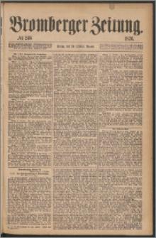 Bromberger Zeitung, 1876, nr 246