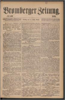 Bromberger Zeitung, 1876, nr 249