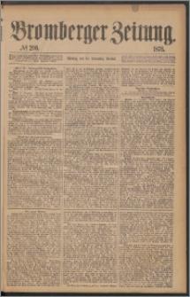 Bromberger Zeitung, 1876, nr 296