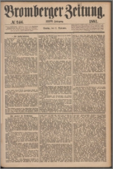 Bromberger Zeitung, 1881, nr 246
