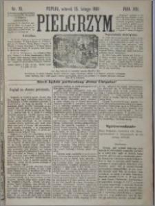 Pielgrzym, pismo religijne dla ludu 1881 nr 19