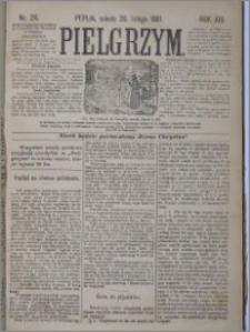 Pielgrzym, pismo religijne dla ludu 1881 nr 24