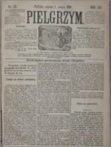 Pielgrzym, pismo religijne dla ludu 1881 nr 25