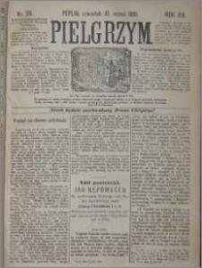 Pielgrzym, pismo religijne dla ludu 1881 nr 29