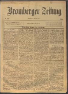 Bromberger Zeitung, 1894, nr 241