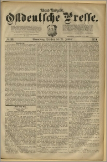 Ostdeutsche Presse. J. 3, 1879, nr 33