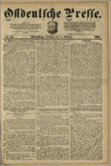 Ostdeutsche Presse. J. 4, 1880, nr 33