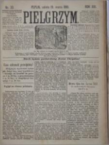 Pielgrzym, pismo religijne dla ludu 1881 nr 33