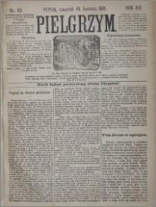 Pielgrzym, pismo religijne dla ludu 1881 nr 43