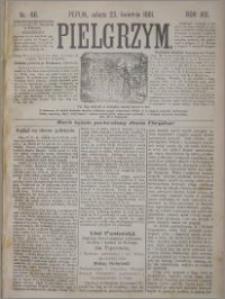 Pielgrzym, pismo religijne dla ludu 1881 nr 46