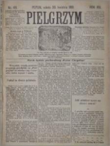 Pielgrzym, pismo religijne dla ludu 1881 nr 49