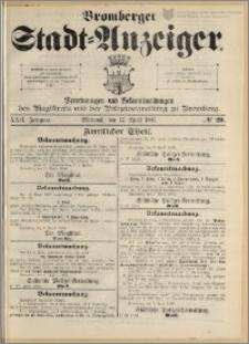 Bromberger Stadt-Anzeiger, J. 22, 1905, nr 29