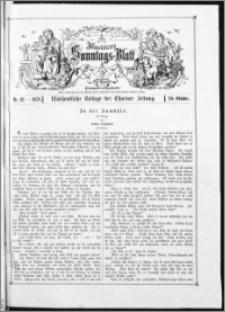 Illustrirtes Sonntags-Blatt : Wöchentliche Beilage der Thorner Zeitung 1878, Nr 42