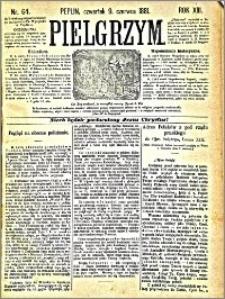Pielgrzym, pismo religijne dla ludu 1881 nr 64
