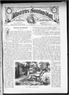 Illustrirtes Sonntags Blatt 1880, nr 5